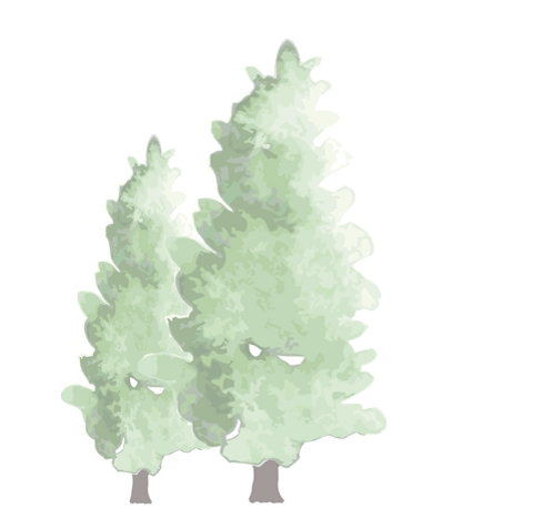 森林の仕事に興味をお持ちの方へ。